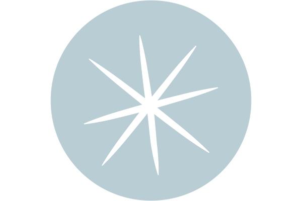 Shine Business Testimonial - Star